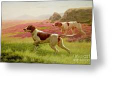 Pointers In A Landscape Greeting Card