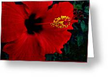 Poison Passion And Seduction Greeting Card