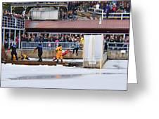 Polar Jump  Greeting Card
