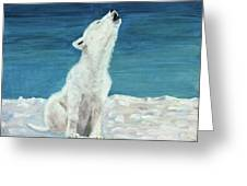 Polar Pup Greeting Card