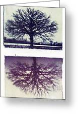 Polaroid Transfer Tree Greeting Card by Jane Linders