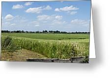 Polder Near Reeuwijk-1 Greeting Card