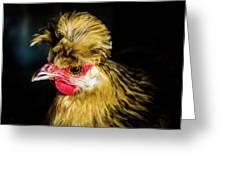 Polish Hen Greeting Card