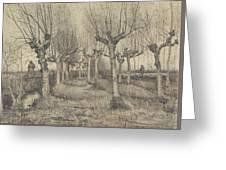 Pollard Birches Nuenen  March 1884 Vincent Van Gogh 1853  1890 Greeting Card