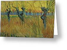 Pollarded Willows And Setting Sun Greeting Card