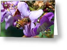 Pollinating 2 Greeting Card