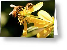 Pollinating Bees Greeting Card