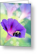Pollinating The Glories Greeting Card