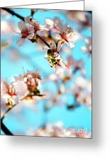 Pollination 1.07 Greeting Card