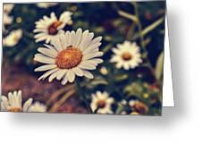 Pollination Love  Greeting Card