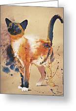 Pollock's Cat Greeting Card