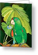 Polly Wants A Flower Greeting Card