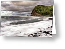 Pololu Whitewash Greeting Card