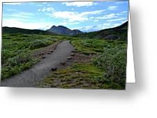 Polychrome Pass Trail, Denali Greeting Card