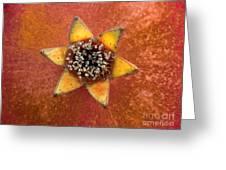 Pomegranate Blossom End Greeting Card