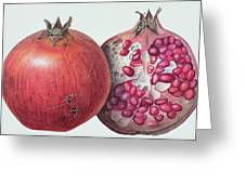 Pomegranate Greeting Card by Margaret Ann Eden