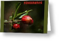 Pomegranite Art Greeting Card