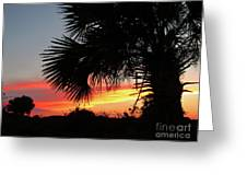 Ponce Inlet Florida Sunset Greeting Card