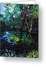 Pond 944 Greeting Card