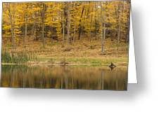 Pond And Woods Autumn 1 Greeting Card