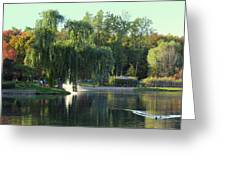 Pond At Mae Stecker Park In Shelby Township Mi  Greeting Card