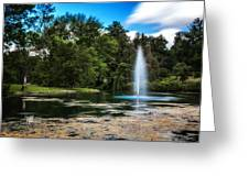 Pond At Spring Grove Greeting Card