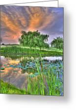 Pond Dreams 4 Greeting Card