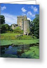 Pond In Front Of A Castle, Blarney Greeting Card