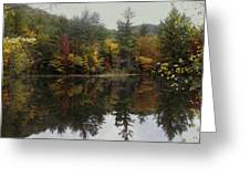 Pond In Jackson Greeting Card