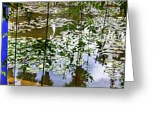 Pond In Marrakesh Greeting Card