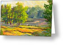 Pond In Morning Light Greeting Card