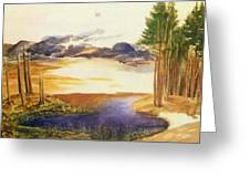 Pond In The Wood Greeting Card