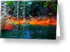 Pond In The Woods Greeting Card