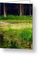 Pond Landscape Print Greeting Card