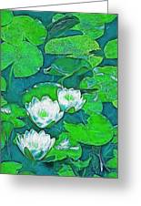 Pond Lily 2 Greeting Card