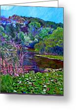 Pond Of Tranquility Greeting Card