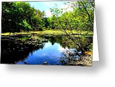 Pond On The Delaware Gap Greeting Card