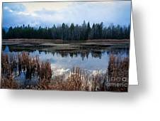 Pond On The Pend Orielle Greeting Card