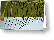 Pond Skaters Greeting Card