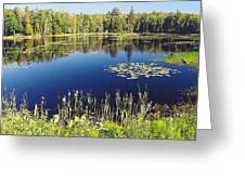 Pond To Ponder Greeting Card