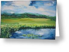 Pond Valley Greeting Card