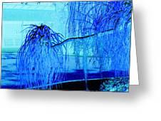 Pony Tail Blue Greeting Card