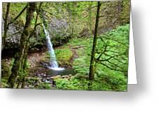 Ponytail Falls, Oregon Greeting Card