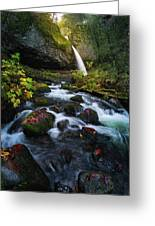 Ponytail Falls With Autumn Foliage Greeting Card