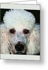 Poodle Art - Noodles Greeting Card by Sharon Cummings