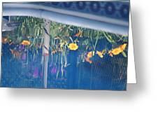 Pool Garden Greeting Card