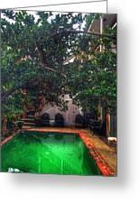 Pool With Tree Greeting Card