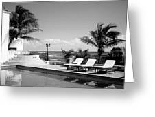 Poolside B-w Greeting Card