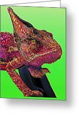 Pop Art Chameleon Greeting Card