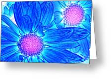 Pop Art Daisies 6 Greeting Card